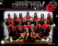 Piedmont Cheerleading 2014